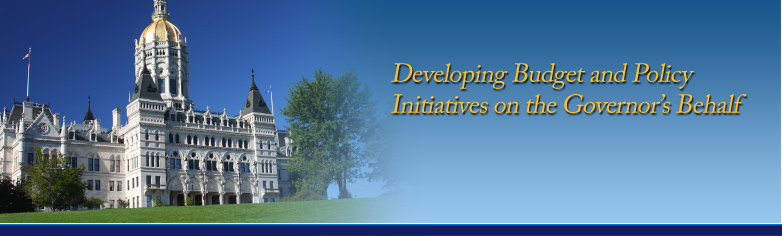Developing Budget and Policy Initiatives on the Governor's Behalf